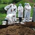 Rãmãşiţele pãmânteşti ale unui bãrbat din Stoina, decedat în urmã cu patru ani, au fost deshumate, marţi, într-o anchetã în cadrul cãreia doi poliţişti din comunã au fost deja arestaţi...