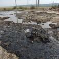 Terenurile agricole ale localnicilor din Aninoasa suferã în aceastã perioadã nu doar din cauza secetei, ci şi din cauza unei poluãri produse cu resturi provenite de la dezafectarea unei foste...