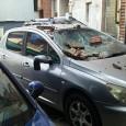 Momente de panică marţi la prânz în zona centrală a municipiului Târgu Jiu, după ce o porţiune de tencuială din cărămidă falsă s-a desprins de pe un bloc şi...