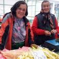 Puţini gorjeni ştiu că mama noului primar al municipiului Târgu Jiu, Marcel Romanescu, vinde de ani de zile legume şi fructe într-o piaţă din Petroşani, toate fiind producţie proprie. Doina...